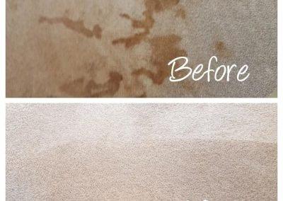 carpet cleaning logan utah