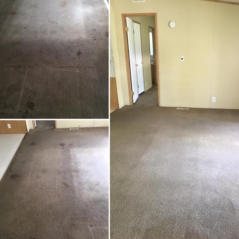 carpet cleaning logan utah